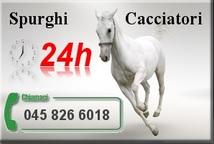 spurghi-24-Verona